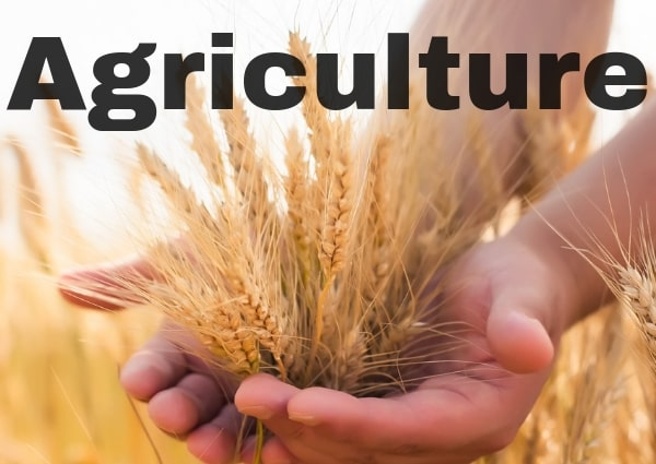 Grundy County Agriculture